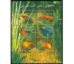 Írán A ** - akvarijní ryby