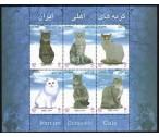 Írán A ** - perské kočky